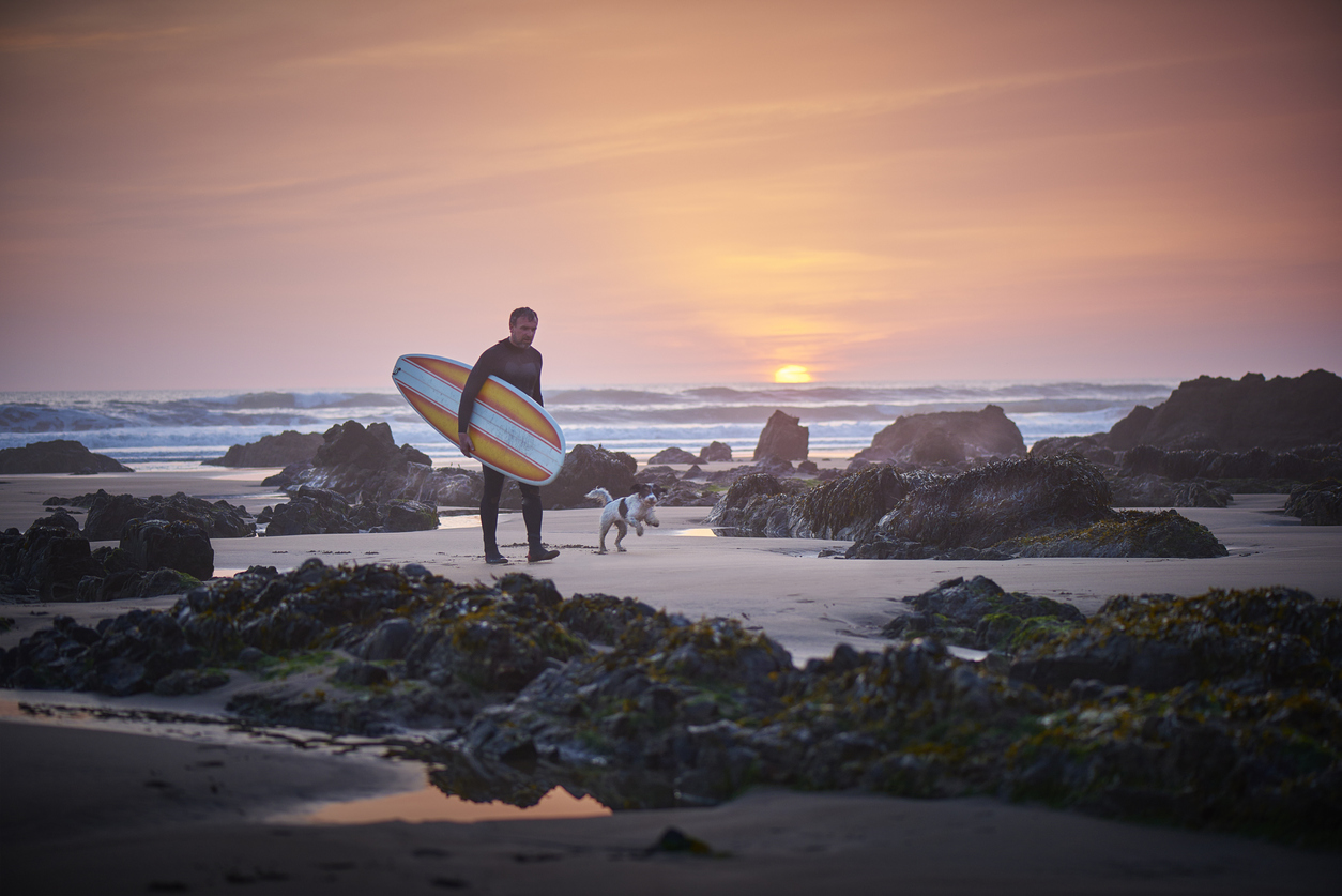 mature surfer leaving the surf at sunset greeted by dog